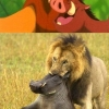 Cartoons vs. real life