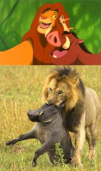 Cartoons Vs Real Life Really Funny Pictures Collection