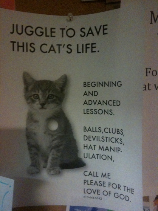 Juggle to save this cat's life
