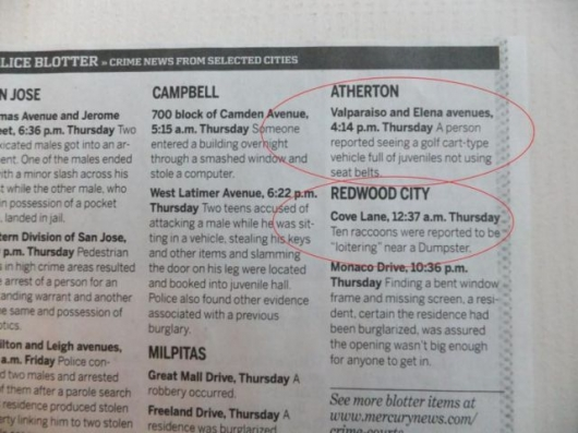 The strange things in the Atherton police blotter - Picture 7