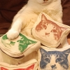 Cat with his merchandise