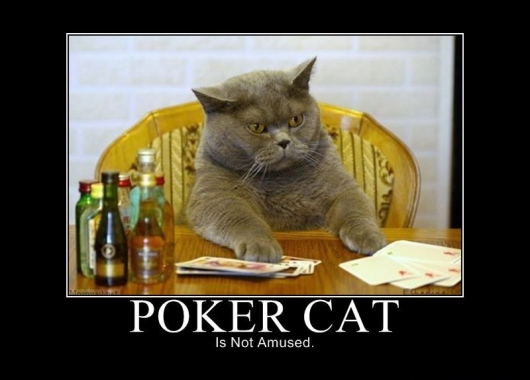 funny poker face quotes