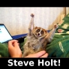 Slow Loris Steve Holt