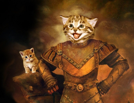 Vigo The Cat Really Funny Pictures Collection On Picshag Com