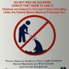 Do not piss on dolphins