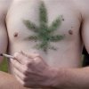 Marijuana chest hair