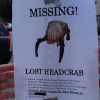 Missing headcrab