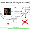 Male sexual thought process