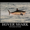 Hover shark