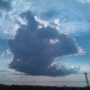 Fish head cloud