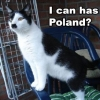 I can has Poland?