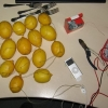 Battery charger mnade of lemons