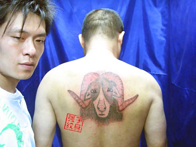 Funny Ram Tattoo Really Funny Pictures Collection On