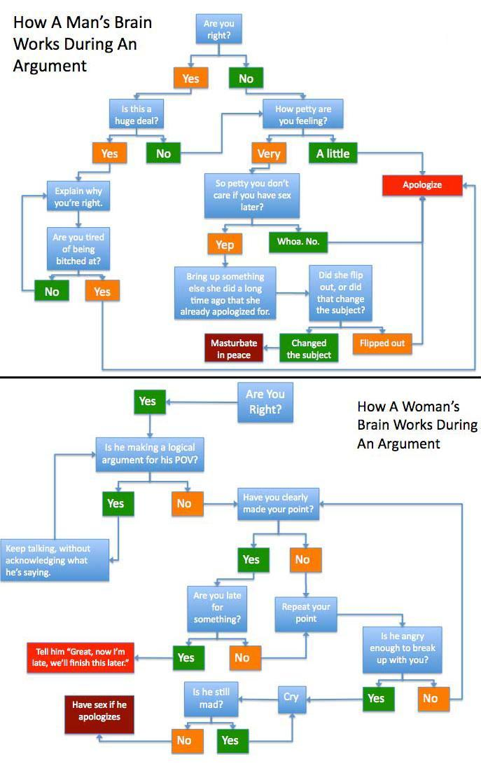 How a man 39 s woman 39 s brain works during an argument for Thought process map template