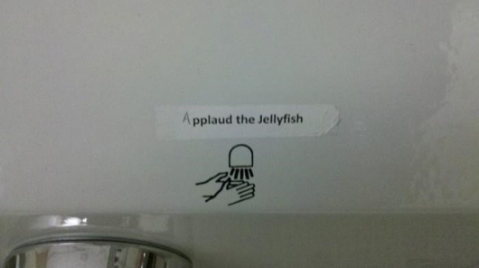 Applaud the jellyfish