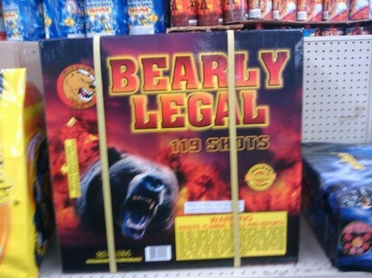 Bearly legal