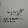 Invisible man walking his dog