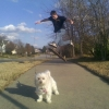 Skateboarder walks the dog