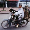Dogs on a bike