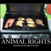Motivational poster: Animal rights