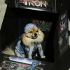 Tron dog costume