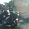 Doggy on motorcycle