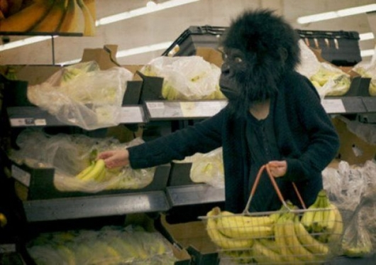 Shopping gorilla